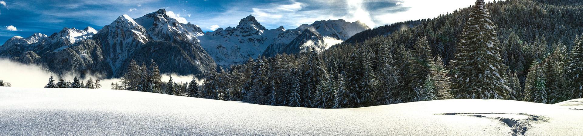 ski_wandern